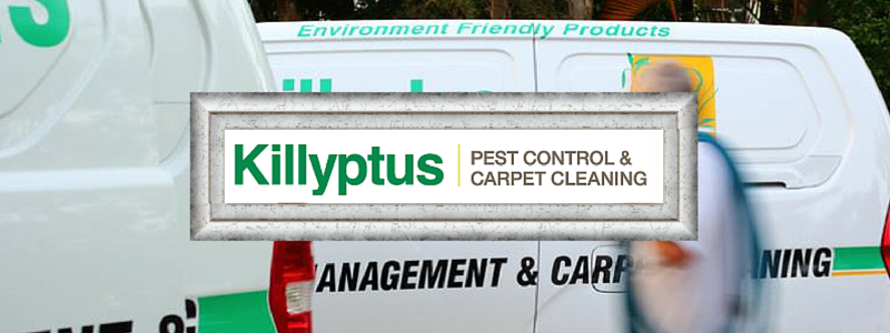Killyptus Pest Control and Carpet Cleaning